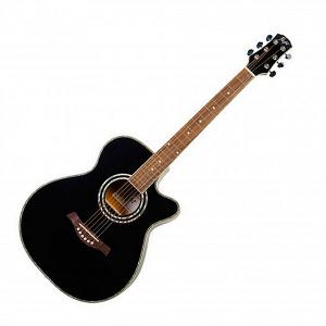 Flight F-230C BLK Akustická gitara